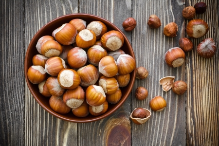 Hazelnuts Stock Photo - 20332060