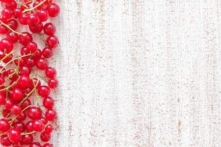 red currants: Red currant background