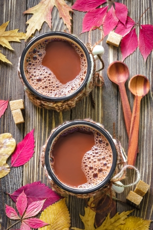 chocolate caliente: Cacao