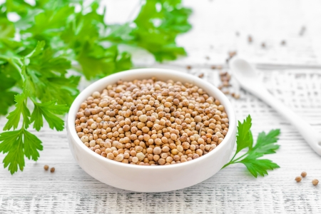 plant seed: Coriander