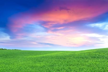 grassplot: Green field