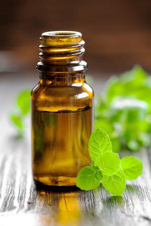 aromatherapy oil: Mint oil Stock Photo