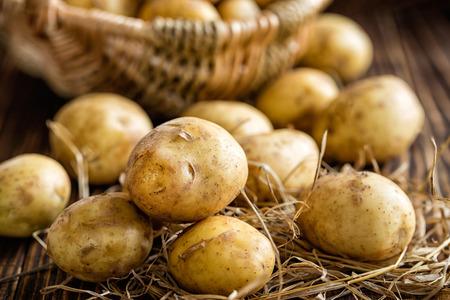 potato plant: Potato Stock Photo