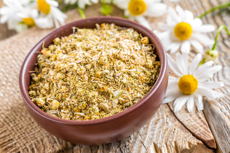 Dry chamomile photo