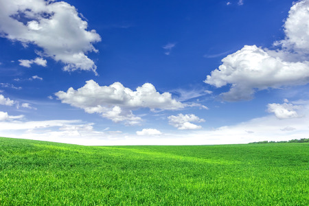 green field: Green field