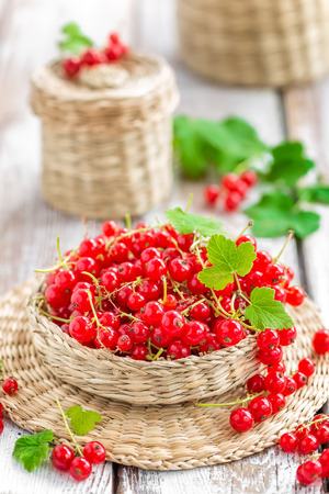 red currants: red currant