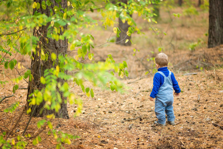 jungle boy: boy in a forest Stock Photo