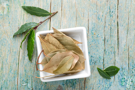 the bay: bay leaf