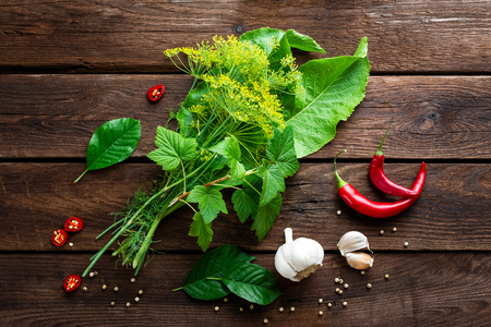 pickling: pickling cucumbers ingredients, herbs, spices, top view, rustic style Stock Photo