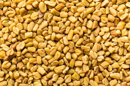 フェヌグ リーク種子背景、スパイス、料理の材料 写真素材
