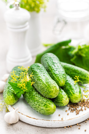 desk: Fresh cucumbers and ingredients for conservation. Preparation marinated salted cucumbers with herbs and salt.