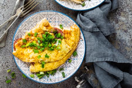 Omelet or omelette with fresh green onion, scrambled eggs Banco de Imagens - 95280216