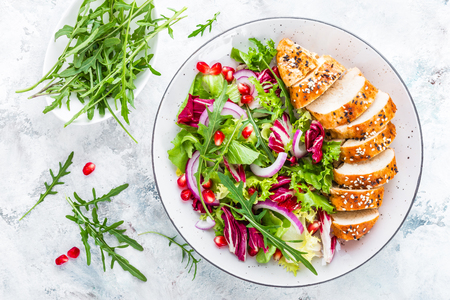 Grilled chicken breast, fillet and fresh vegetable leafy salad with arugula and pomegranate on plate Imagens
