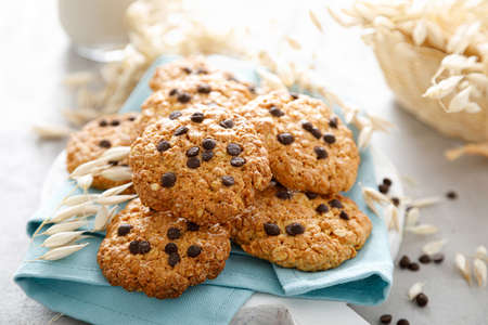 Homemade oatmeal cookies with chocolate drops and milk for breakfast Reklamní fotografie