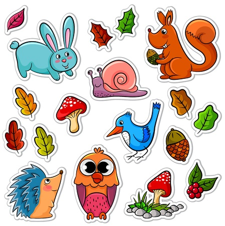 collection of forest animals and plants Vector