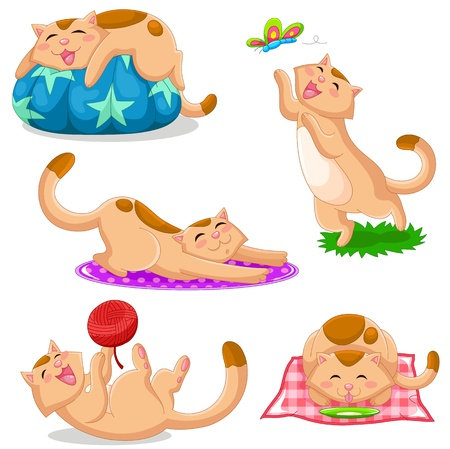 over eating: set of cats in different positions Illustration