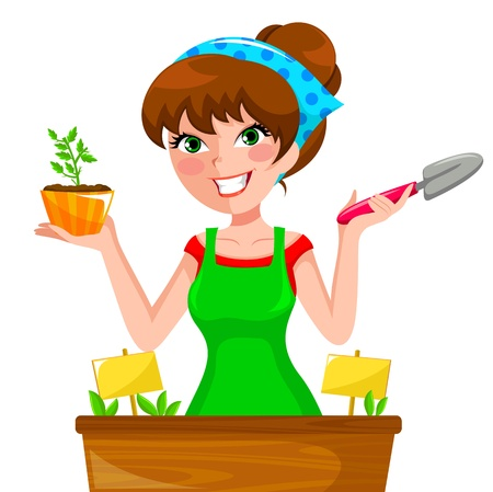 herb garden: young woman planting herbs in her planter Illustration