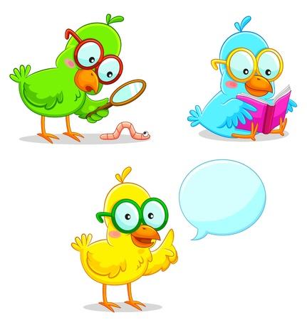 meraklı: üç akıllı kuş öğrenme ve keşfetmek Çizim