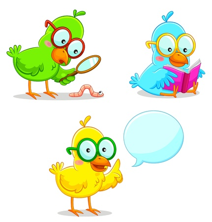 three smart birds learning and exploring Vector