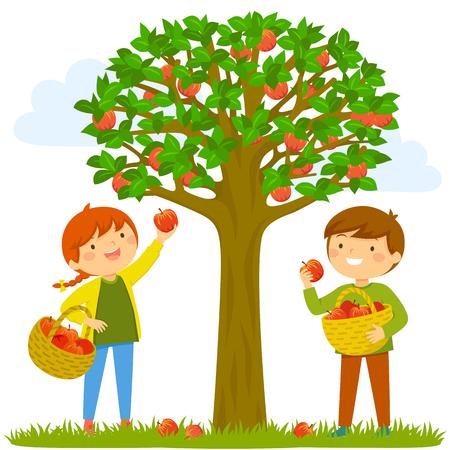 Deux enfants cueillant des pommes de l'arbre