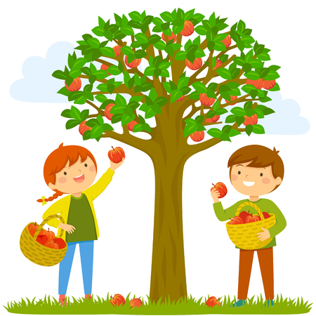 Two kids picking apples from the tree