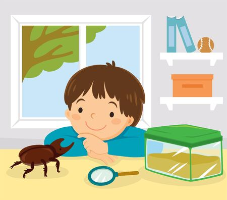 Pet stag beetle, Japanese rhinoceros beetle or Japanese horned beetle. Little kid playing with his pet kabutomushi beetle at home. Archivio Fotografico - 149875501
