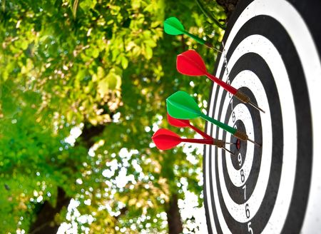 thrust: Target with the thrust darts on the nature
