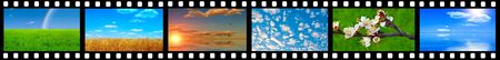 Various slides with the image of corners of the nature Stock Photo - 6229923