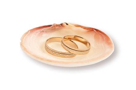 Gold wedding rings in a sea shell photo