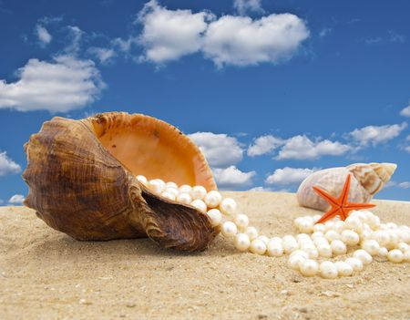 freshwater pearl: Cockleshell with a pearl necklace on seacoast Stock Photo
