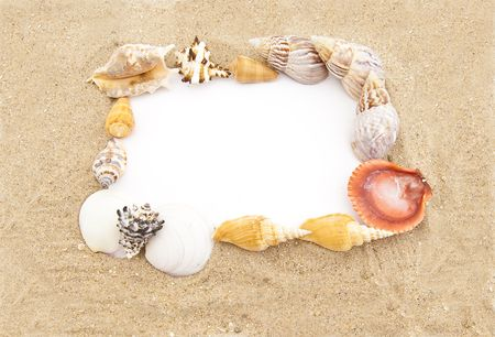 White paper for note  in a frame from sea shells and sand photo