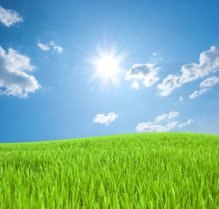 Meadow with a young green grass and the blue sky with the sun Stock Photo - 6413886