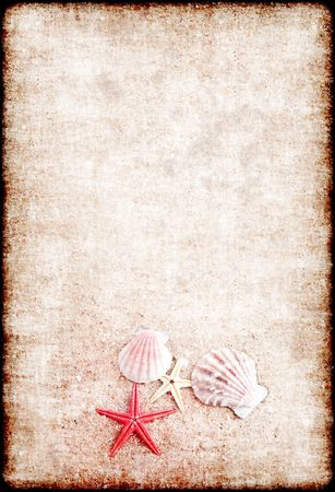 Beautiful background from sand and shells in a grunge style photo