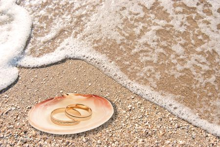 Wedding rings in a shell on sea coast photo