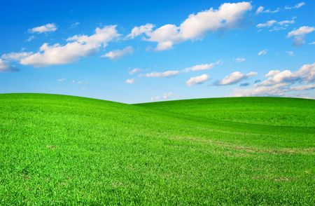 Meadow with a young green grass and the blue sky with clouds Stock Photo - 6472177