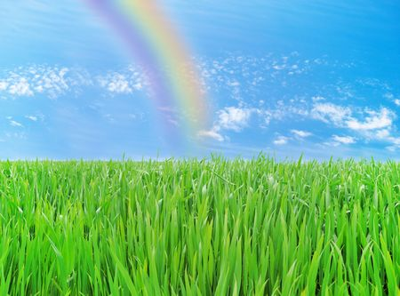 Meadow with a young green grass and the blue sky with clouds and rainbow Stock Photo - 6568733