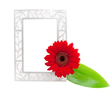 frame for photo with leaf and flower photo
