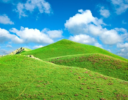 Hills covered with a green grass  photo