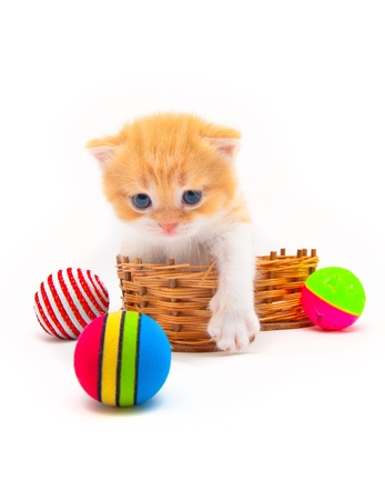 Red kitten in a wattled basket with multi-colored balls