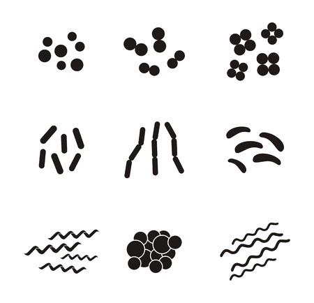 spirochete: shapes of bacteria - pictogram