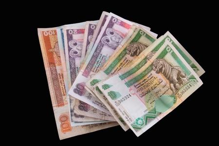 Sri Lanka Currency - Rupee - Isolated