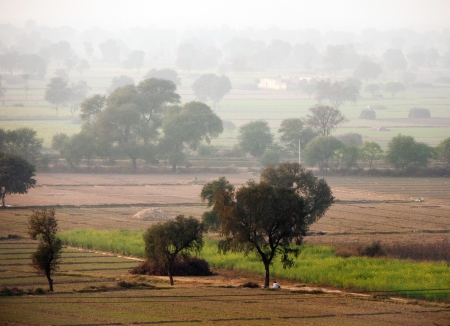 agriculture india: Rural landscape in India