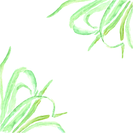 Watercolor grass drawed by hand. Hand painted watercolor background.