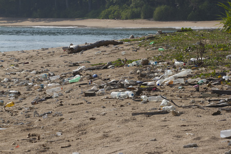 plastic pollution: Beach on the island of Little Andaman in the Indian Ocean littered with plastic. Pollution of coastal ecosystems, natural plastic and beaches.