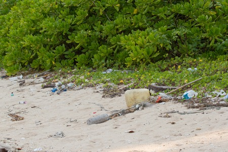 plastic pollution: Dirty beach on the island of Little Andaman in the Indian Ocean littered with plastic. Pollution of coastal ecosystems, natural plastic and beaches.