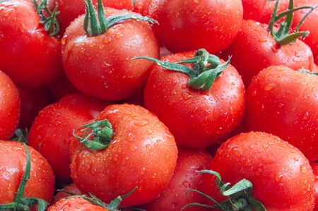 red ripe  tomatoes for background. top view