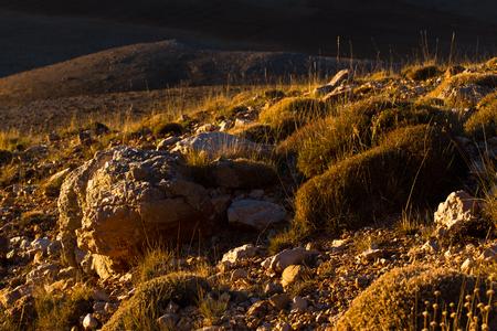 mountaintop: Good scenery of mountain landscape, Turkish. Alp vegetation