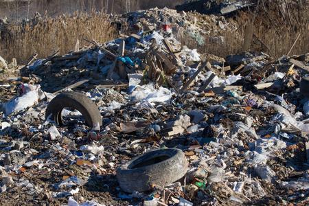 wastes: Construction dump of various wastes. Building debris: bricks, wood, broom, tires