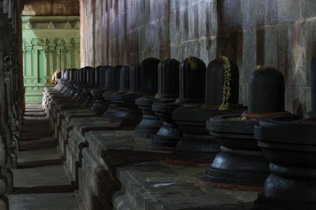 linga: Group of Shiva lingams in Shiva temple, Kanchipuram, India