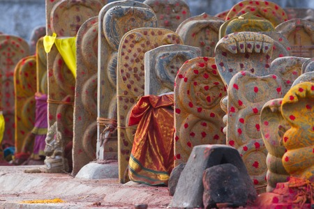 shakti: Group of yellow tombs with red dots in Shiva temple, Kanchipuram, Tamil Nadu